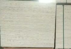 杨木胶合板18厘
