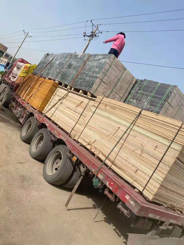 进口木价飞涨冲击下游产业