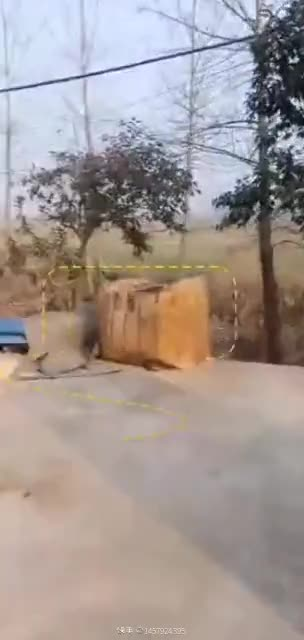 13方杂木脚墩发货视频